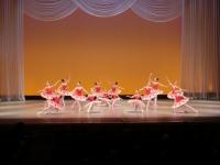 2013+Ballet+2.JPG