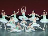 2010-Ballet-Photo